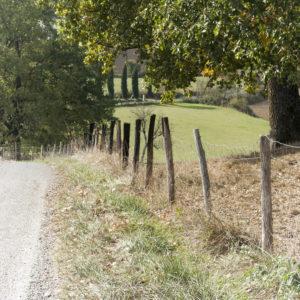 Photo couleur autour de Castelnau de Montmiral (81)
