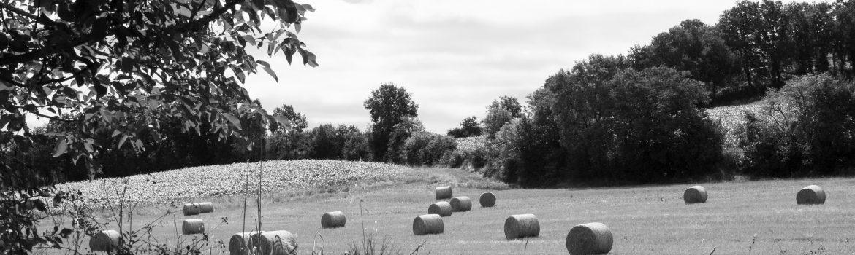 Castelnau-de-Montmiral-Balles-de-paille-©IsabelleFraysse