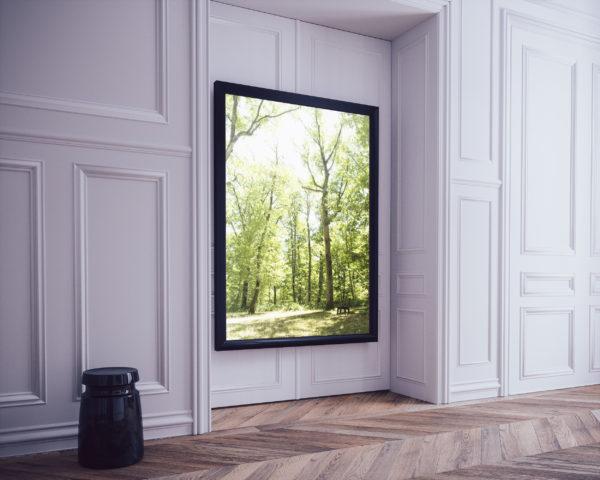 clairière dans la forêt de Bouconne - cadre vertical grand format